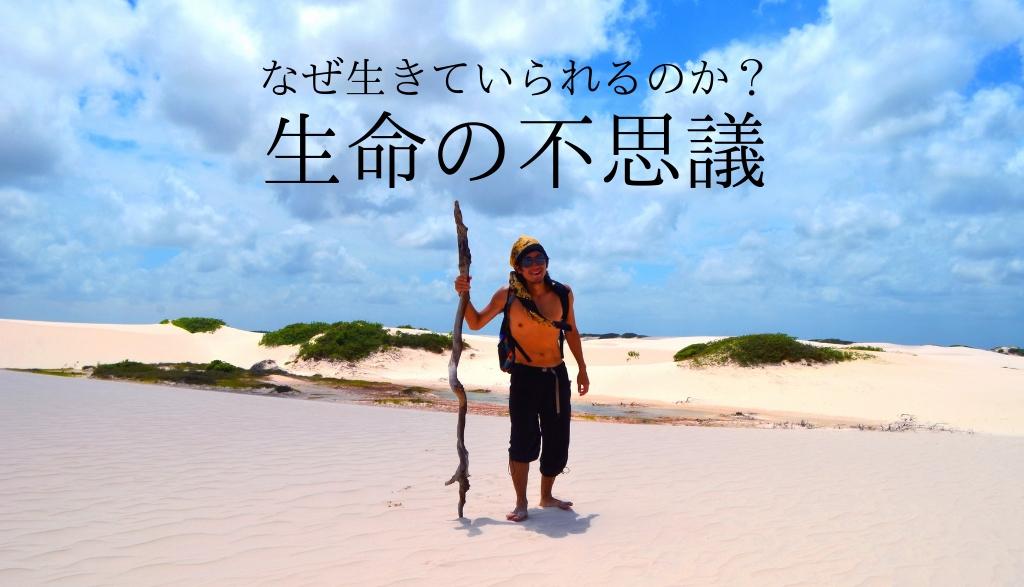 摩訶不思議!白砂漠レンソイス!雨季に突然現れる幻の魚の謎!!